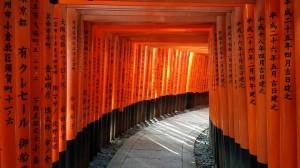 Torii gates at Fushimi Inari, Kyoto